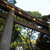 神社の鳥居(明治神宮)