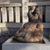 神戸のえべっさん兵庫の蛭子神社の参拝順路と神様を十日えびすの前に確認